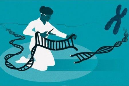 Nobel Prize in Chemistry awarded for CRISPR / Cas genome editing method