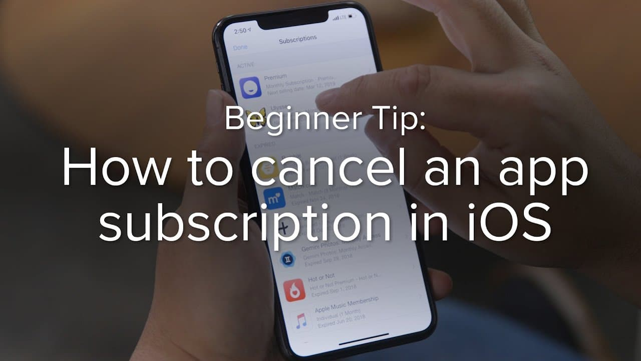 How to get a refund for an iOS app or subscription? 2 Easy Steps